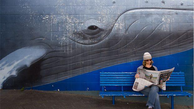 Mural At Kaikorua, New Zealand
