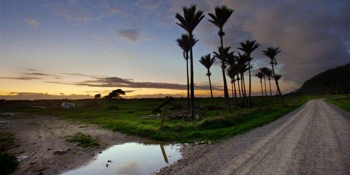 Road To Karamea
